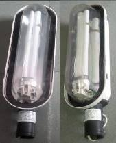 Platinum SE EDX 111   1x11W CFL Street Light Fixture